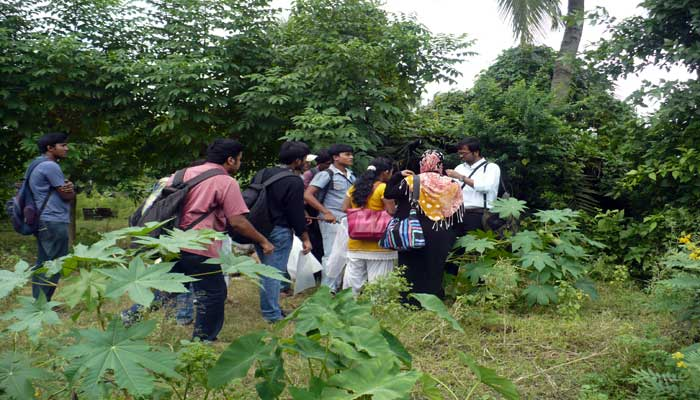 Field Work on Insect Biodiversity at Eastern Kolkata region